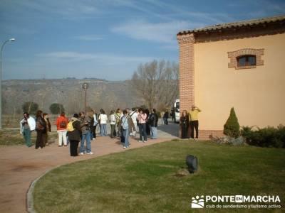 Bodega Vega Real - Turismo en Ribera del Duero
